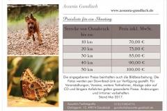 2017-05-16 19_58_05-Produkt (A5 Flyer) individuell gestalten